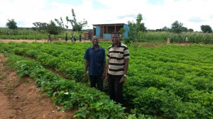 Patrick and Malison in new area of Sweet Potatoes